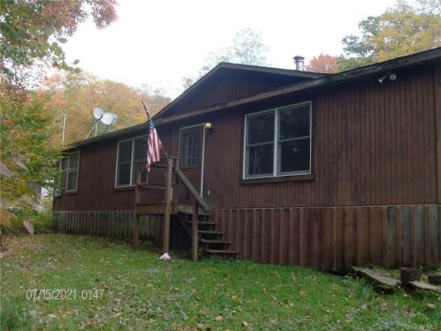 934 Little Spring Brook Road, Roscoe, NY 12776 (MLS #H6147339) :: Cronin & Company Real Estate
