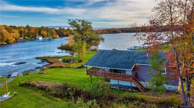 5 West Lane, Parksville, NY 12768 (MLS #H6148176) :: Cronin & Company Real Estate