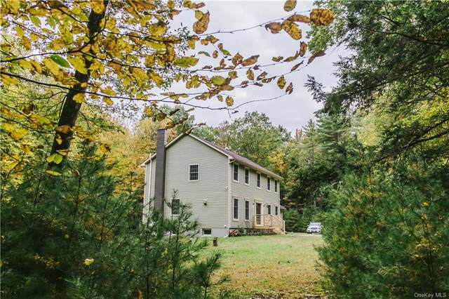 154 Mail Road, Barryville, NY 12719 (MLS #H6148210) :: Carollo Real Estate