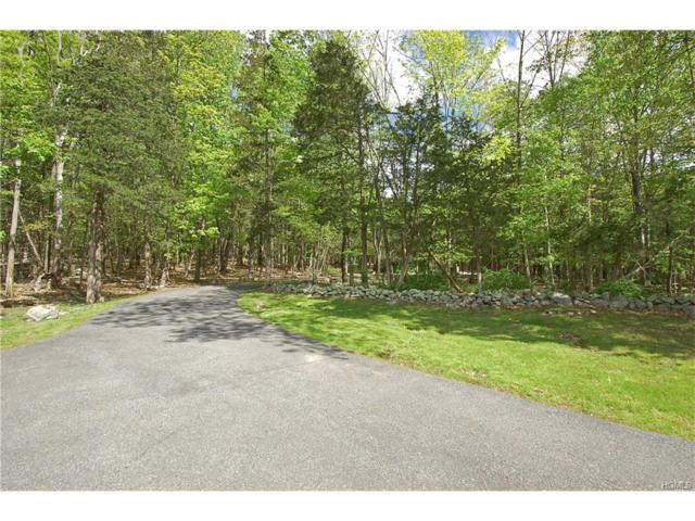 1 Park Place, Chester, NY 10918 (MLS #4727038) :: William Raveis Baer & McIntosh