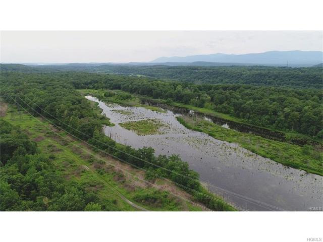 00 Us Route 9W, Athens, NY 12015 (MLS #4744410) :: Shares of New York