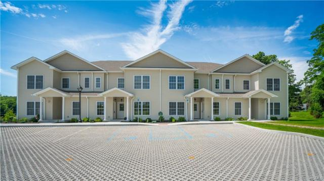 1203 Pankin Drive #1203, Carmel, NY 10512 (MLS #4906199) :: William Raveis Baer & McIntosh