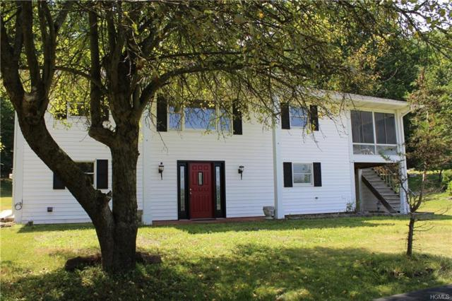 547 Lake Road, Pine Plains, NY 12567 (MLS #4906437) :: William Raveis Baer & McIntosh