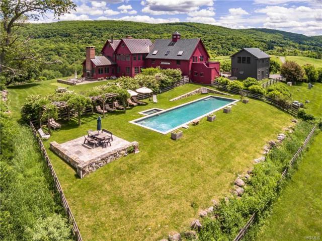 309 E Ancram Road, Ancram, NY 12503 (MLS #4908058) :: Mark Seiden Real Estate Team