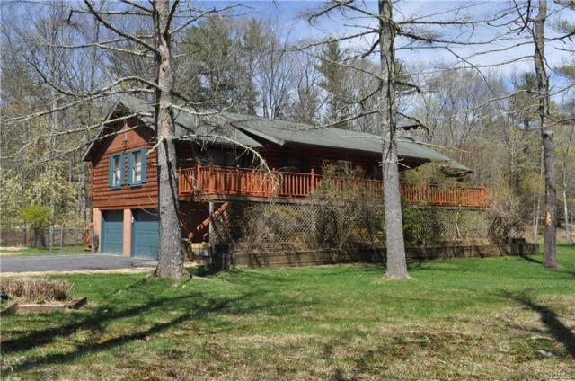 309 John Joy Road, Woodstock, NY 12498 (MLS #4921805) :: Mark Boyland Real Estate Team
