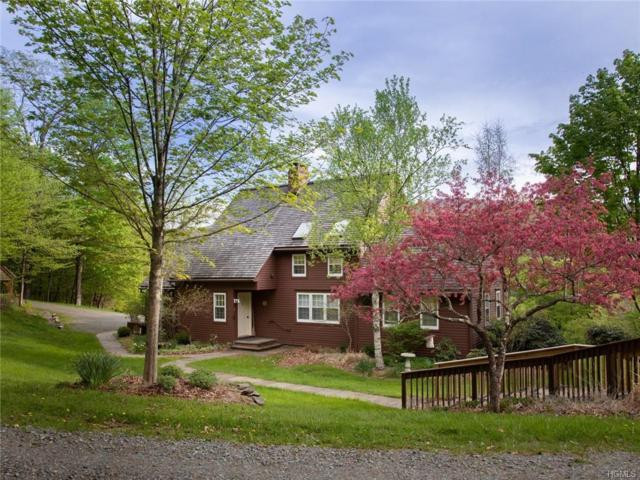 51 Sugar Bush Road, Livingston Manor, NY 12758 (MLS #4943193) :: Mark Seiden Real Estate Team