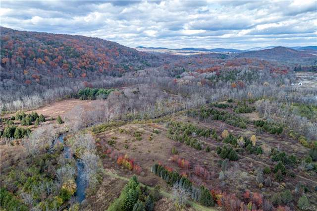 Leedsville Road, Amenia, NY 12501 (MLS #H5116381) :: William Raveis Legends Realty Group