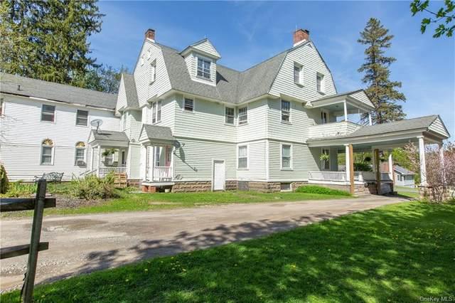 33 Lake Street, Stamford, NY 12167 (MLS #H6020784) :: Carollo Real Estate