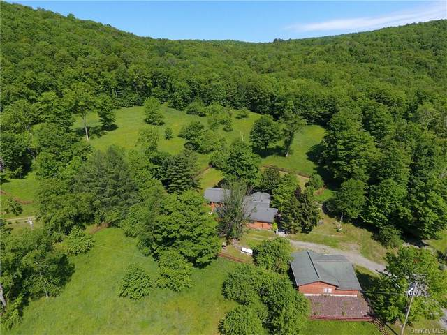 65-67 Apex Road, Hancock, NY 13783 (MLS #H6042765) :: Frank Schiavone with William Raveis Real Estate