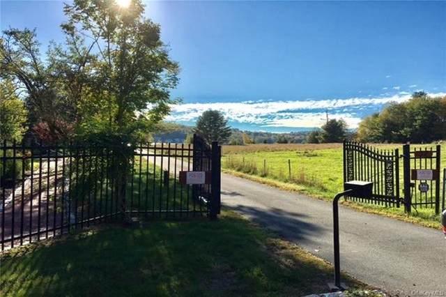 37 Horseshoe Lake Road, Kauneonga Lake, NY 12749 (MLS #H6047072) :: Nicole Burke, MBA | Charles Rutenberg Realty