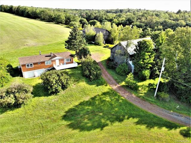 2818 State Route 17B, Cochecton, NY 12726 (MLS #H6074946) :: William Raveis Baer & McIntosh