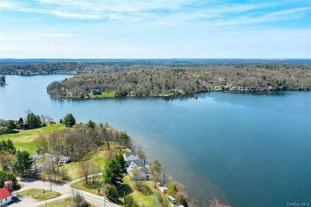TBD Horseshoe Lake Road, Kauneonga Lake, NY 12749 (MLS #H6109420) :: Carollo Real Estate