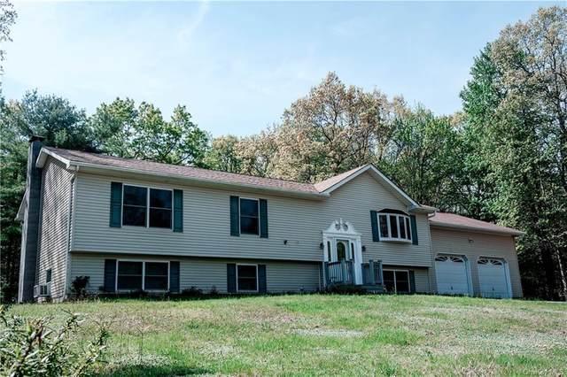 186 Perry Pond Road, Narrowsburg, NY 12764 (MLS #H6116132) :: Goldstar Premier Properties