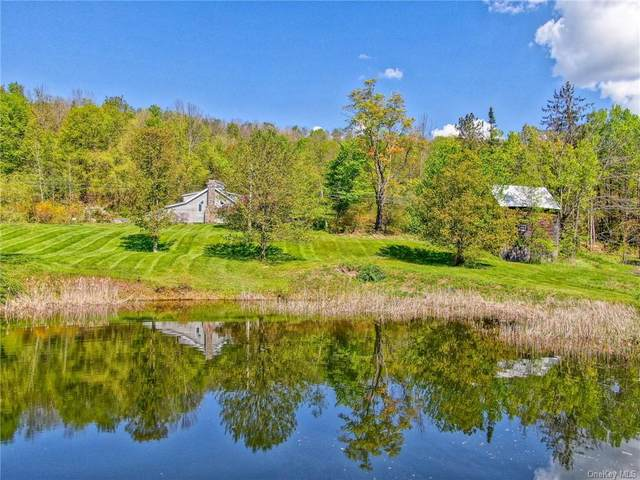 435 Yeagerville Road, Napanoch, NY 12458 (MLS #H6116467) :: Cronin & Company Real Estate