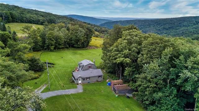 4 Woodfield Road, Claryville, NY 12740 (MLS #H6122115) :: Cronin & Company Real Estate