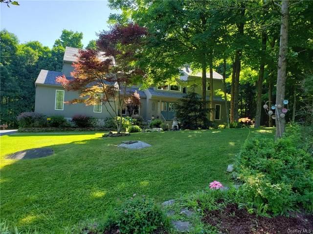 7 Dennis Drive, Highland Mills, NY 10930 (MLS #H6124502) :: Barbara Carter Team