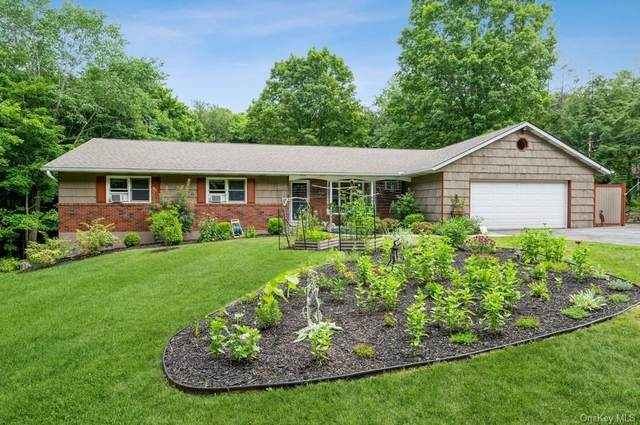 141 Overhill Road, Stormville, NY 12582 (MLS #H6130930) :: Carollo Real Estate