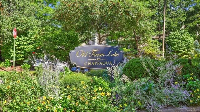 156 Birchwood Close #156, Chappaqua, NY 10514 (MLS #H6139448) :: Kendall Group Real Estate | Keller Williams