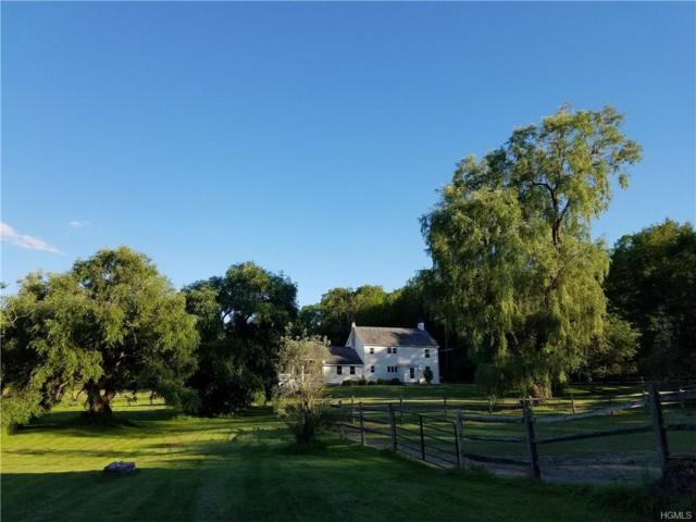 260 Schoolhouse Road, Staatsburg, NY 12580 (MLS #4819756) :: Mark Boyland Real Estate Team