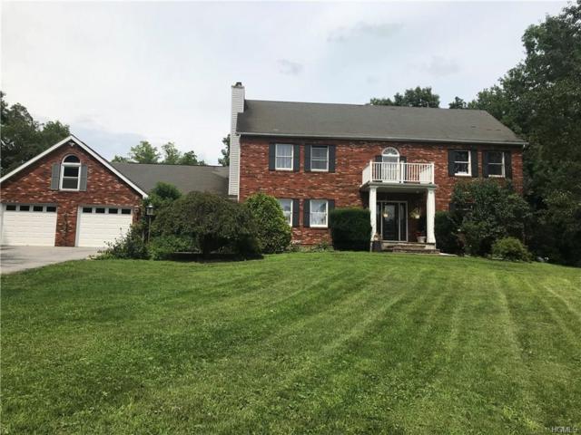 47 Wey Road, Rhinebeck, NY 12572 (MLS #4822511) :: Mark Boyland Real Estate Team