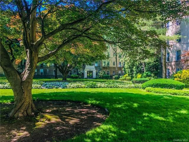 472 Gramatan Avenue J4, Mount Vernon, NY 10552 (MLS #H6045613) :: William Raveis Baer & McIntosh