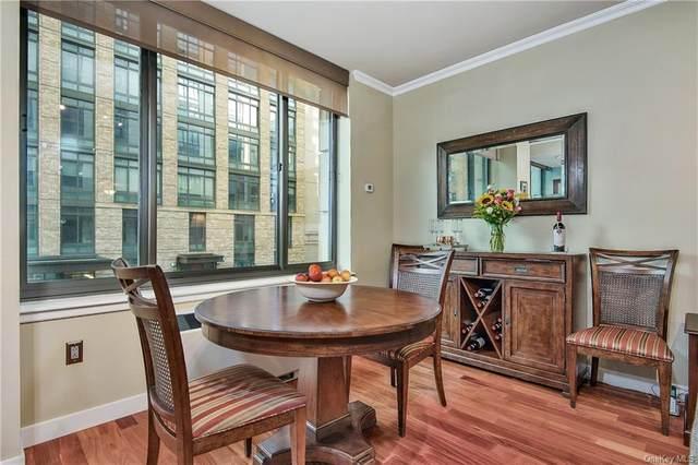 10 City Place 2B, White Plains, NY 10601 (MLS #H6103784) :: Carollo Real Estate