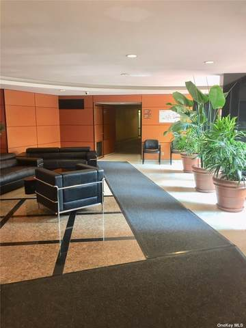 139-15 83 Avenue C-324-, Briarwood, NY 11435 (MLS #3265607) :: Cronin & Company Real Estate