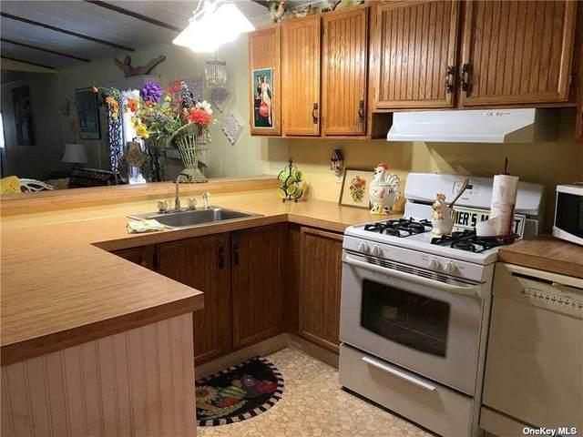 1800 -20E Osborne Avenue, Riverhead, NY 11901 (MLS #3291404) :: Shalini Schetty Team