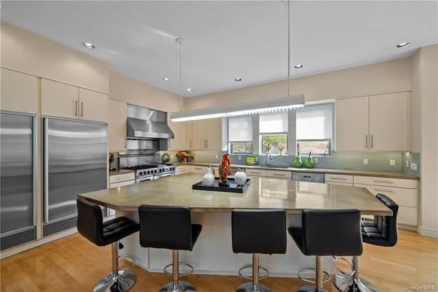 51 Kingwood Park, Poughkeepsie, NY 12601 (MLS #H6062324) :: McAteer & Will Estates   Keller Williams Real Estate