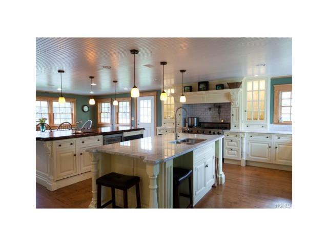 156 Bauernfeind Road, Callicoon, NY 12723 (MLS #4535837) :: Mark Boyland Real Estate Team