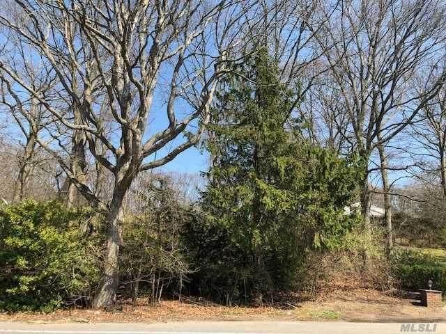 236 Bagatelle Road, Melville, NY 11747 (MLS #3027866) :: Signature Premier Properties