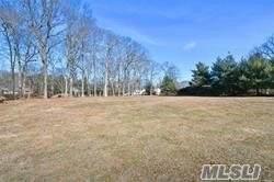 19 A Broad Oak Road, Dix Hills, NY 11746 (MLS #3193158) :: Signature Premier Properties