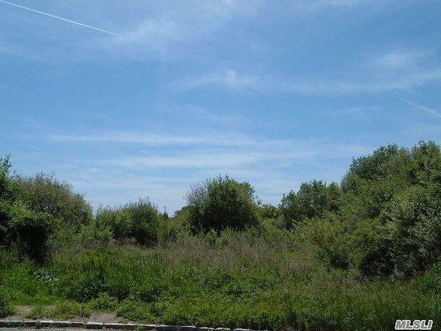 Lot 1.6 Brackenwood Path - Photo 1