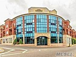 130 Post Avenue #319, Westbury, NY 11590 (MLS #3265149) :: McAteer & Will Estates   Keller Williams Real Estate