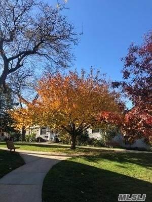 67-18 136th Street A, Kew Garden Hills, NY 11367 (MLS #3269442) :: McAteer & Will Estates | Keller Williams Real Estate