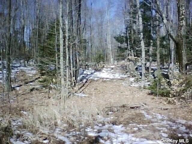 Babcock Lake Rd - Photo 1