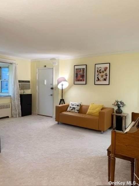 6028 Little Neck Parkway, Little Neck, NY 11362 (MLS #3305362) :: Signature Premier Properties