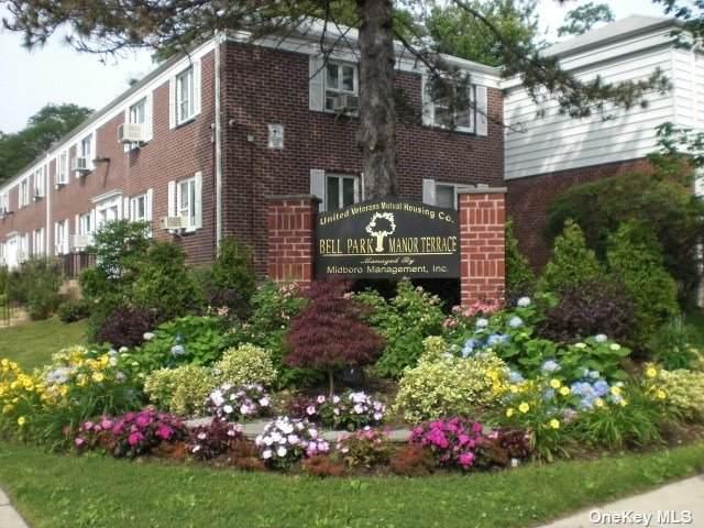 227-20 Hillside Avenue Lower, Queens Village, NY 11427 (MLS #3309865) :: Cronin & Company Real Estate