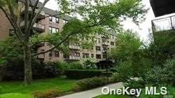 6 Birchwood Court 5K, Mineola, NY 11501 (MLS #3346507) :: Cronin & Company Real Estate