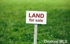 Mt Vernon Avenue, Patchogue, NY 11772 (MLS #3353444) :: Signature Premier Properties
