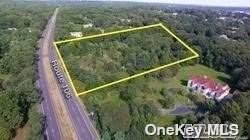 103 & 105 Route 106, Muttontown, NY 11791 (MLS #3354330) :: Carollo Real Estate