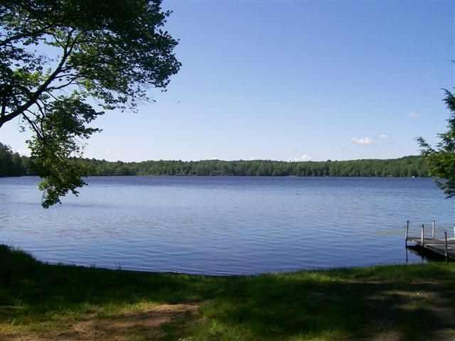(39) Ridge Road, White Lake, NY 12786 (MLS #4207812) :: Mark Seiden Real Estate Team