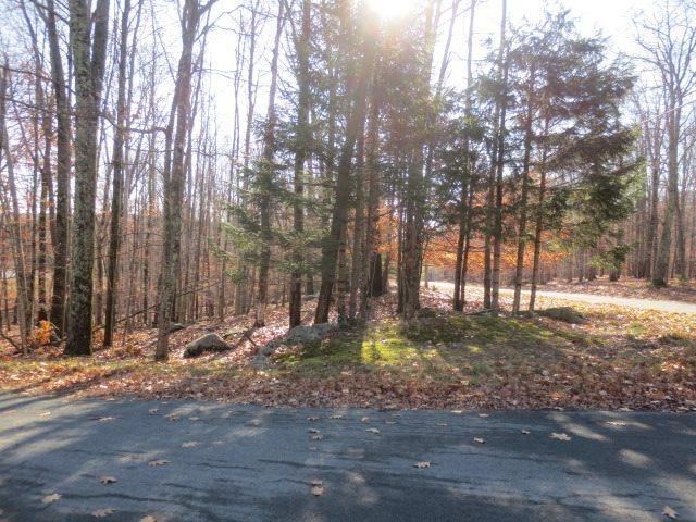 E Lake Joseph Road, Forestburgh, NY 12777 (MLS #4214938) :: Mark Boyland Real Estate Team