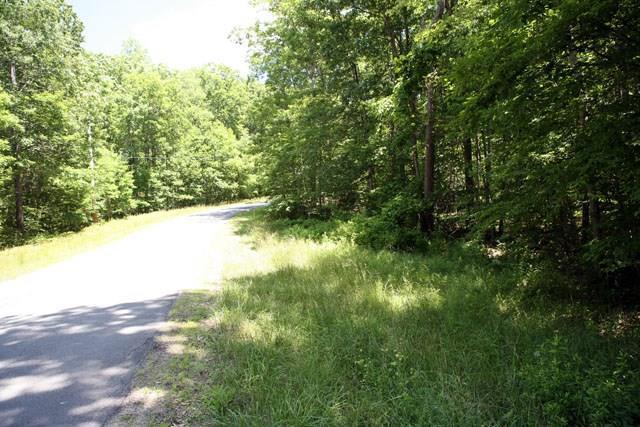 Lot 1 Cushetunk Drive, Cochecton, NY 12726 (MLS #4217288) :: Michael Edmond Team at Keller Williams NY Realty