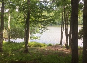 Lot 39 Kenoza Trail, Kenoza Lake, NY 12750 (MLS #4217298) :: Mark Seiden Real Estate Team