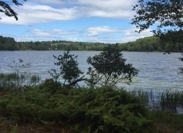 Lot 40 Kenoza Trail, Kenoza Lake, NY 12750 (MLS #4217299) :: Stevens Realty Group