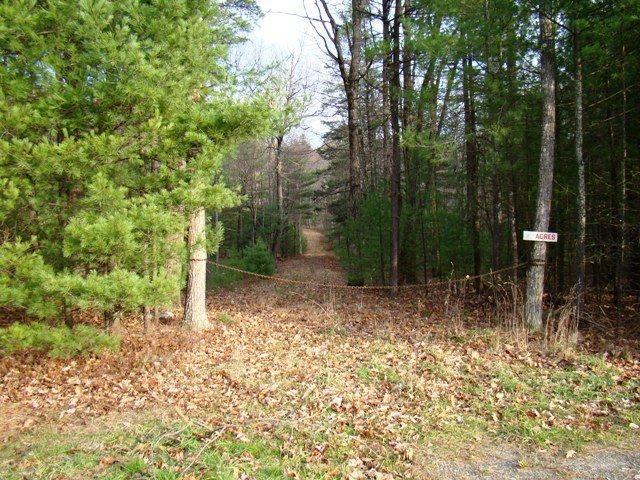 (7.9) State Route 42, Forestburgh, NY 12777 (MLS #4219177) :: Mark Seiden Real Estate Team