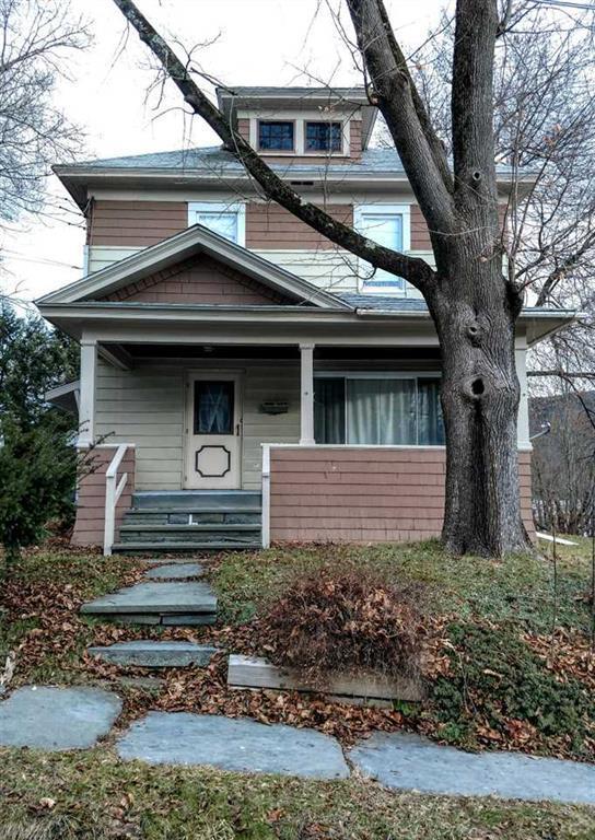 100 Leonard Street, Hancock, NY 13783 (MLS #4219723) :: Mark Seiden Real Estate Team
