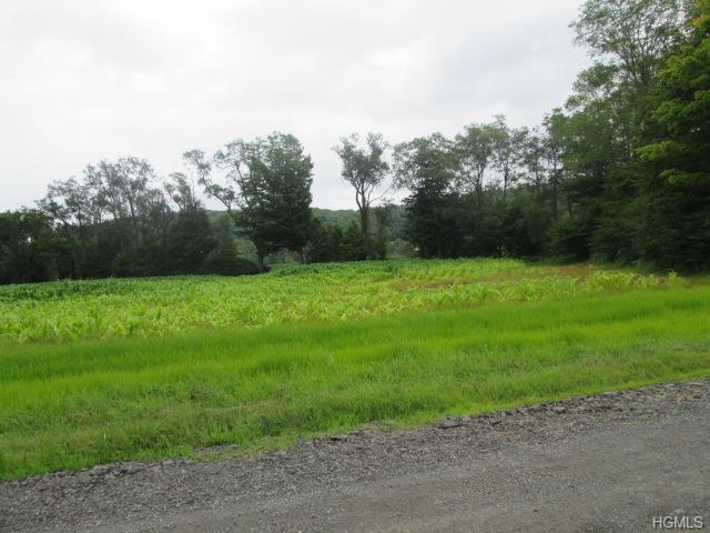 Welsh Road, Callicoon, NY 12723 (MLS #4537096) :: Mark Boyland Real Estate Team