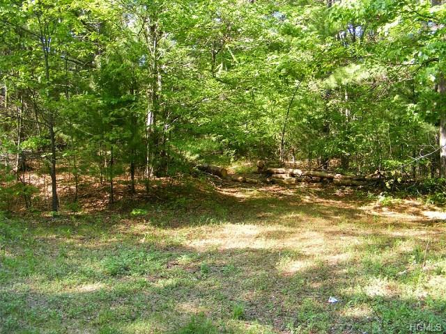 Lot #2 Red Hill Road, Wurtsboro, NY 12790 (MLS #4601946) :: William Raveis Legends Realty Group